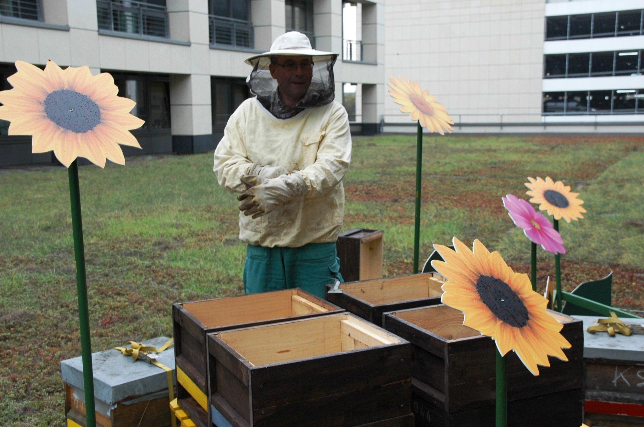 honigverkauf soll bienen retten helfen in den arcaden gibt es spandauer nektar wilhelmstadt. Black Bedroom Furniture Sets. Home Design Ideas