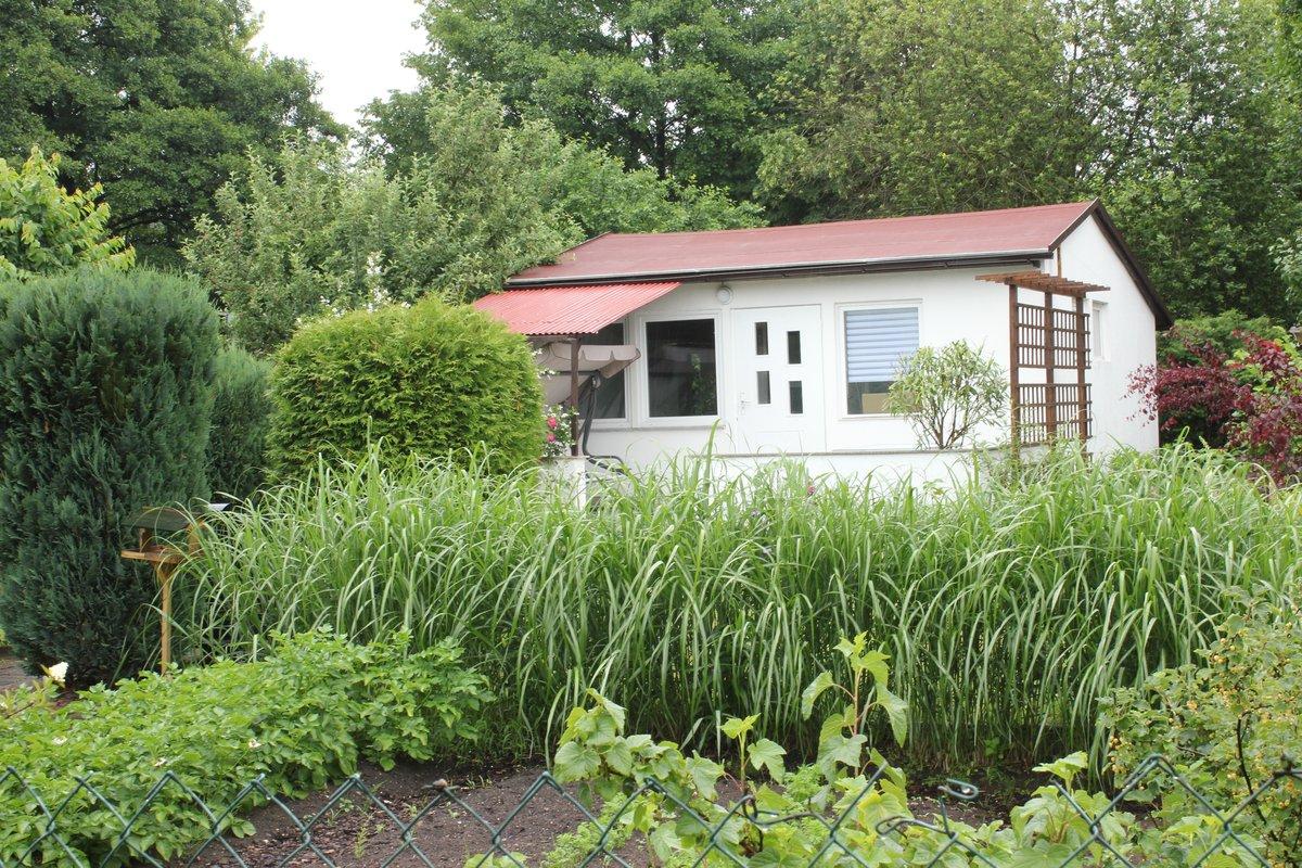 Zum Tag des offenen Gartens kann zum Beispiel die Parzelle 131 in der Kleingartenanlage Rübländer Graben, unweit des S-Bahnhofs Karow besichtigt werden.