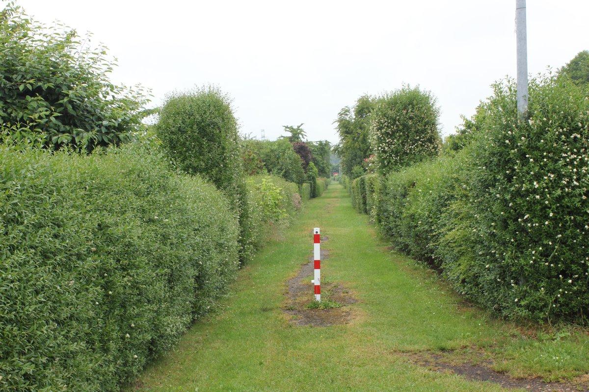 Eine gepflegte grüne Idylle erwartet die Besucher am Tag des offenen Kleingartens zum Beispiel in der Kleingartenanlage Rübländer Graben, unweit des S-Bahnhofs Karow.
