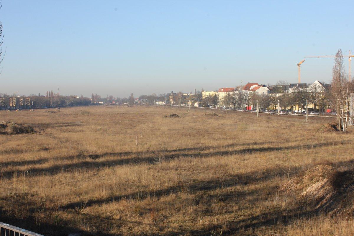 Das ehemalige Güterbahnhofsgelände ist die größte innerstädtische Brache im Pankow. Bis hier gebaut werden kann, wird es noch längere Zeit dauern. Foto: BW