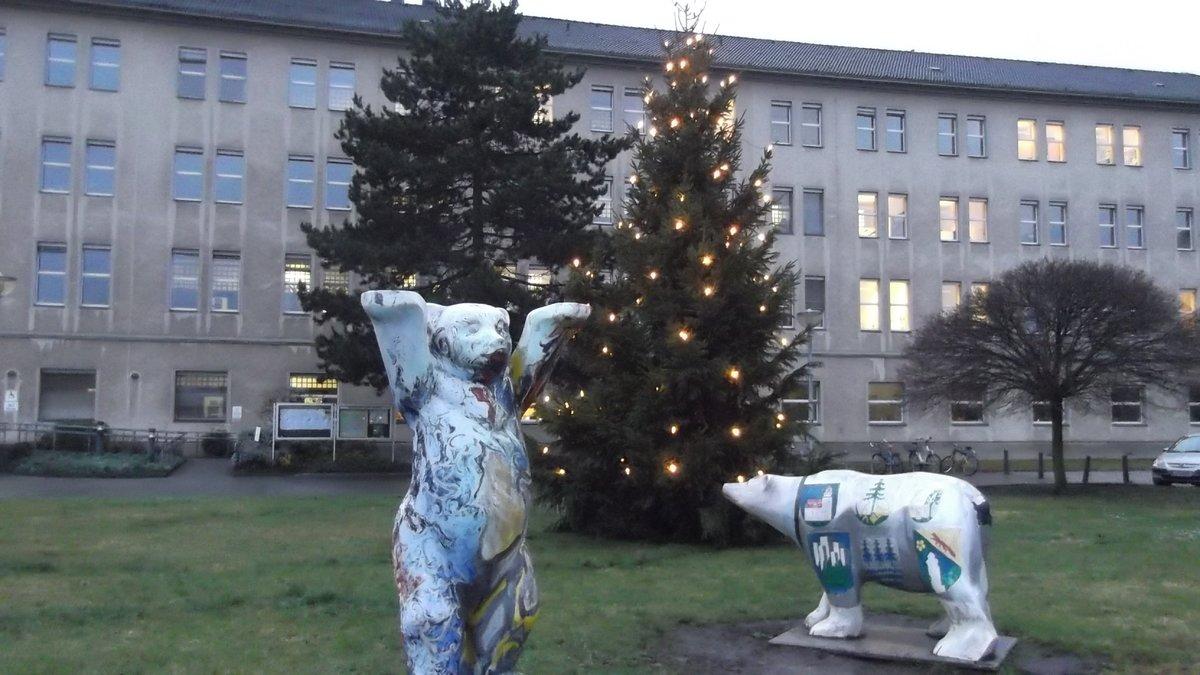 Weihnachtsbäume aus Bad Steben - Wittenau