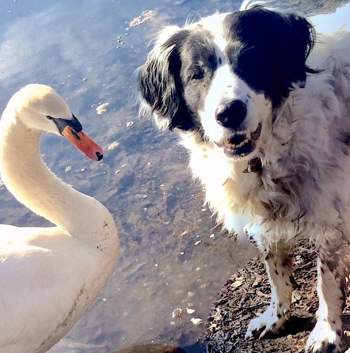 Lotta von Mahlsdorf mit ihrem besten Freund Lohengrin